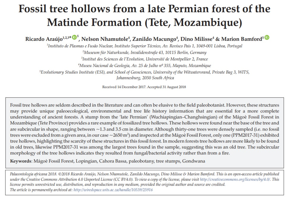 A screen shot of the paper published in Palaeontologia Africana.