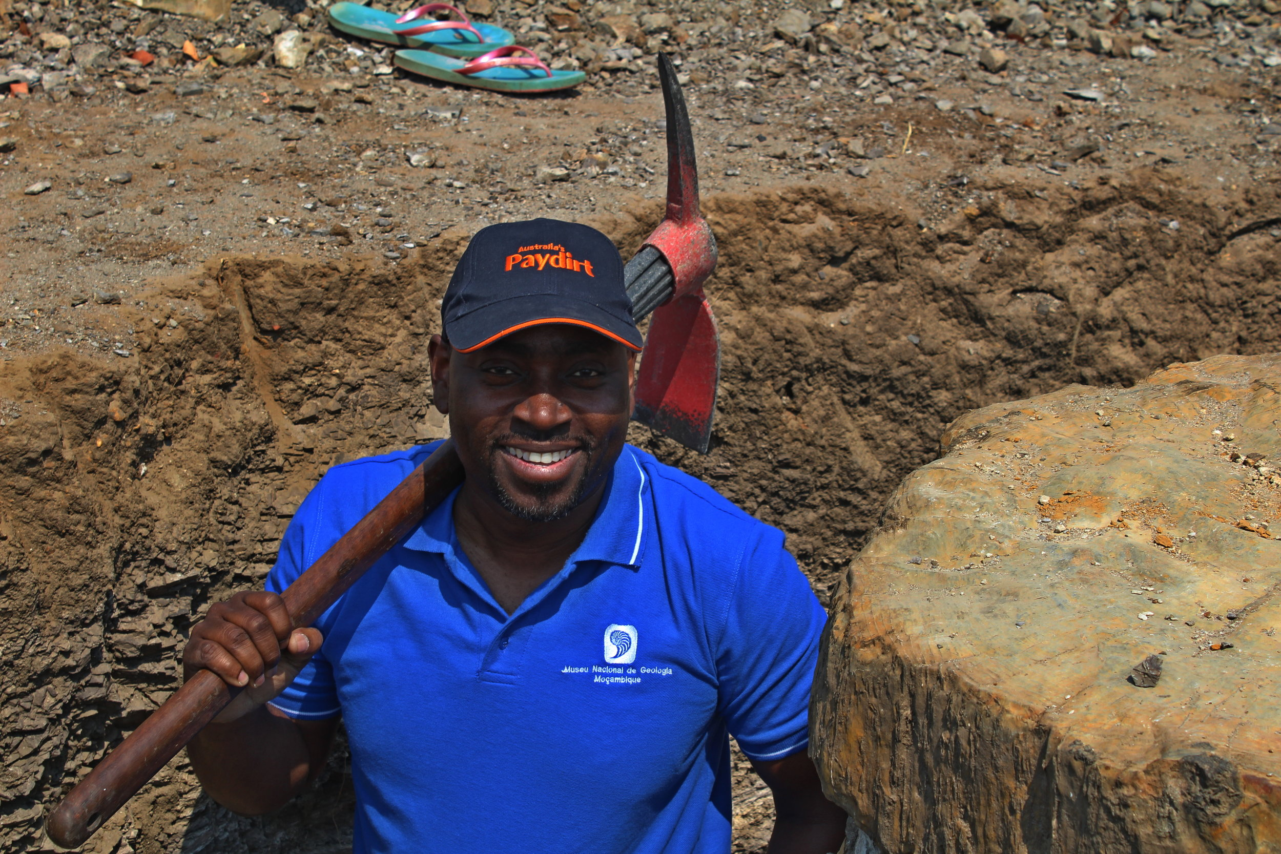 Dino Milisse participating in a fossil log excavation for examining the root structure of a +250Ma old tree.