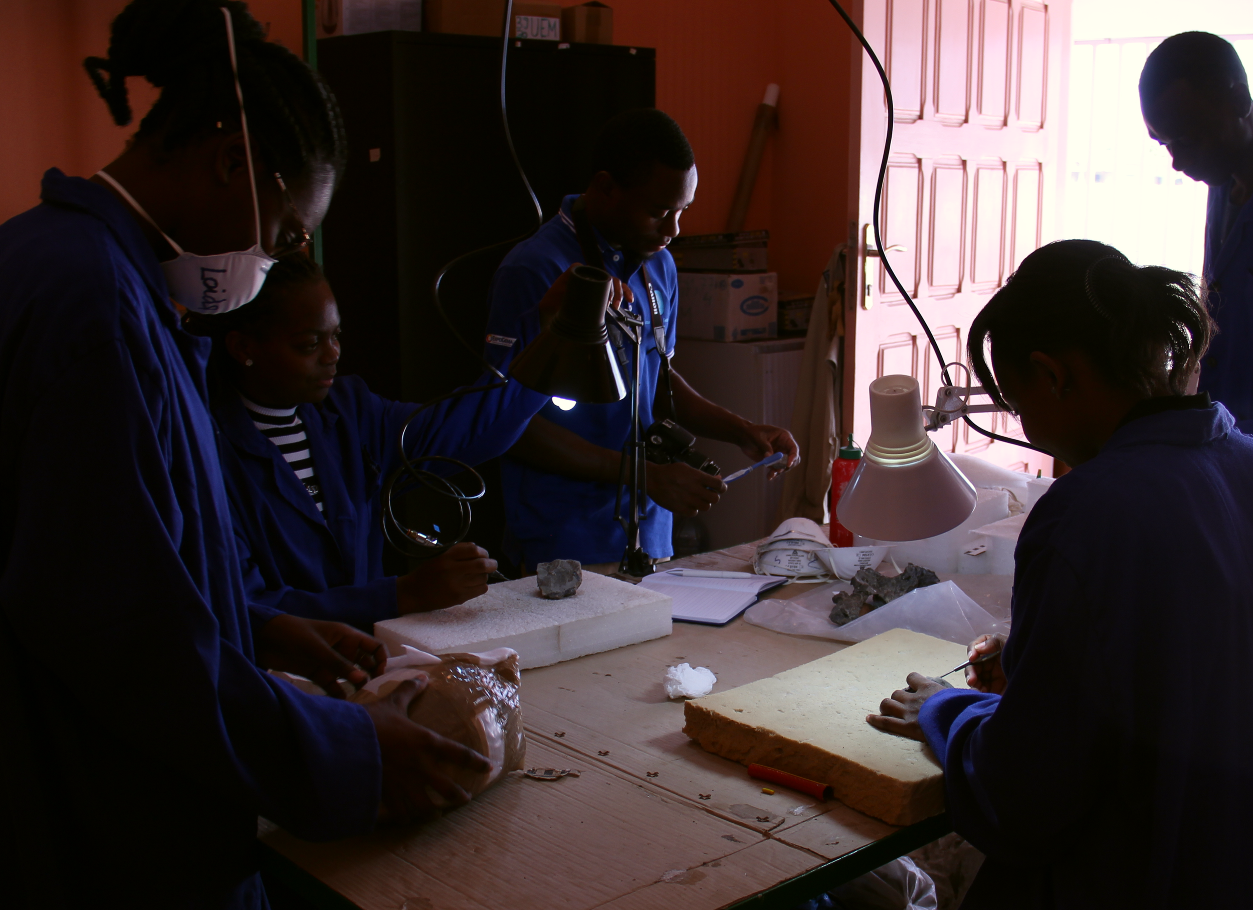 The PaleoMoz team working together in the fossil preparation laboratory.