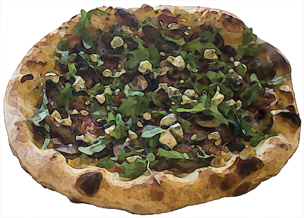 TT Pizza Fig IMG_5752.png