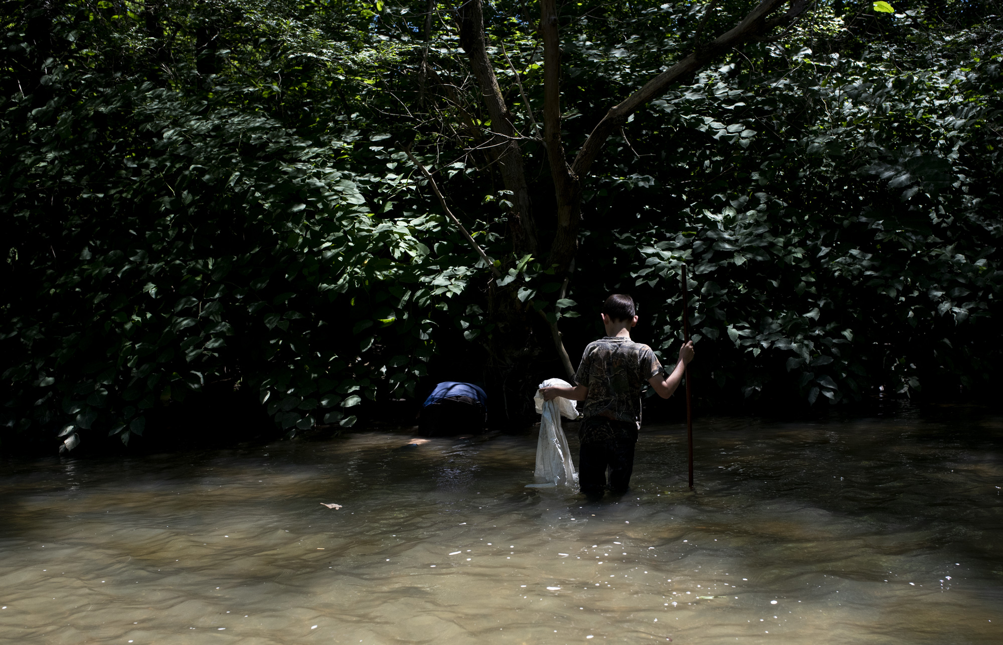 Adyn Clemens watches as John Clemens, of Irwin, look under the brush and tree root for snapping turtle in Sewickley Creek in Sewickley twp on July 7, 2018.