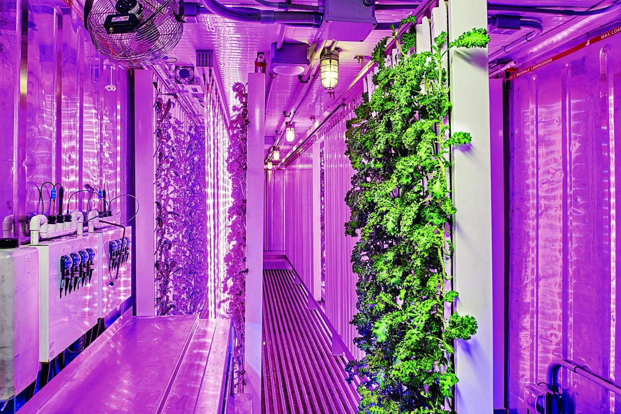 A box farm in use. PHOTO:TONY LUONG FOR THE WALL STREET JOURNAL