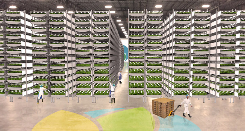 AeroFarms  is currently building the world's largest vertical farm  in Newark, NJ. (Credit: AeroFarms)