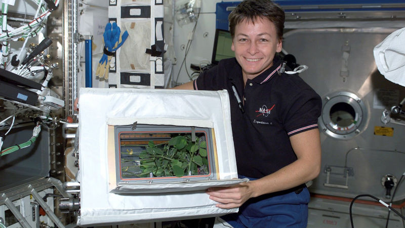 Photo: NASA/Marshall Space Flight Center