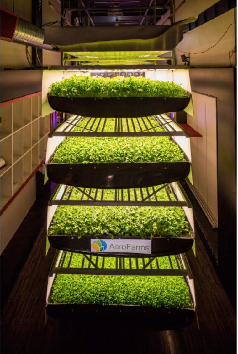 AeroFarm hasn't started vertically farming on an industrial scale, yet.