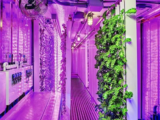 urban-farming-the-wall-street-journal.jpeg