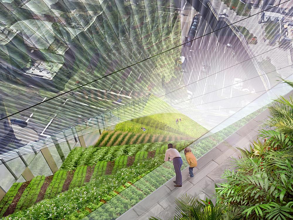koolhaas-garden-4.jpeg