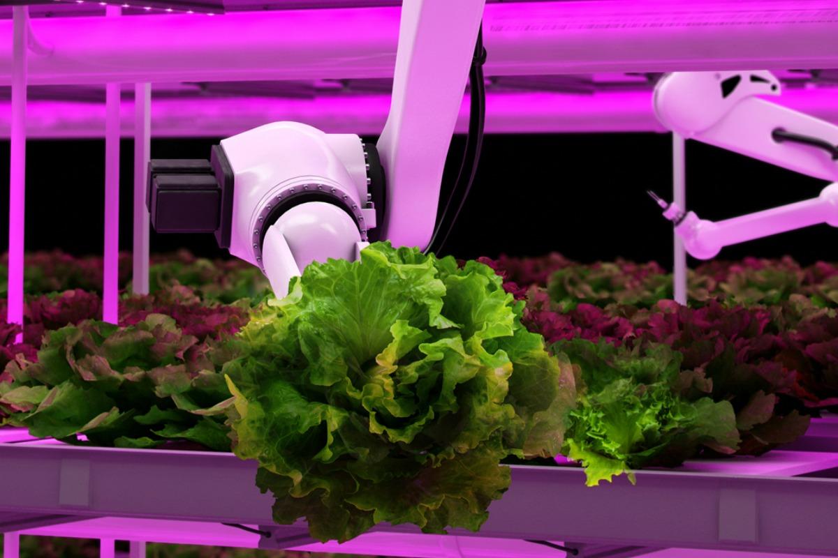 Special_features-jan2017-energy-Vertical_Farming.jpg