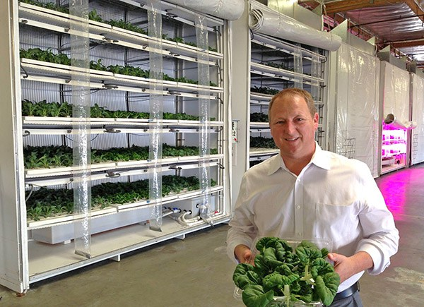 Steve Fambro, CEO of Famgro Farms, developed a vertical growing system that he said is more efficient than greenhouse and field food crop production.  Photos courtesy of Famgro Farms.