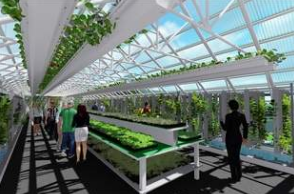 This architectural rendering by Design Collaborative provides a view of the greenhouse now under construction on the North Campus of Ivy Tech Community College in Fort Wayne. The greenhouse, which is scheduled for completion this fall, will include space for conducting soil and plant testing, growing produce and raising fish for food. (Courtesy of Ivy Tech Community College in Fort Wayne)