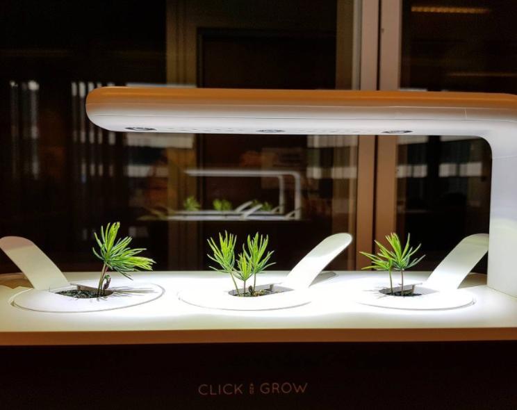 Click N Grow