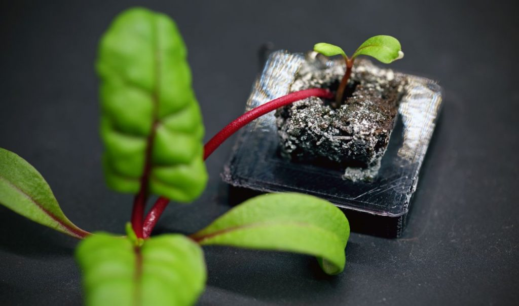 A 3D printed Farmshelf prototype plant pod. Photo via Ultimaker