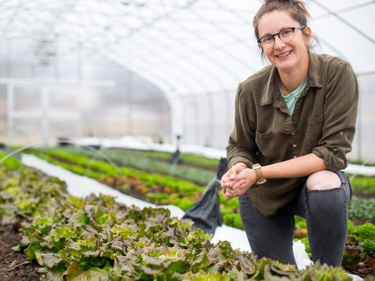 Jenny Quiner, owner of Dogpatch Urban Gardens in her greenhouse Monday, Dec. 11, 2017.(Photo: Zach Boyden-Holmes/The Register)