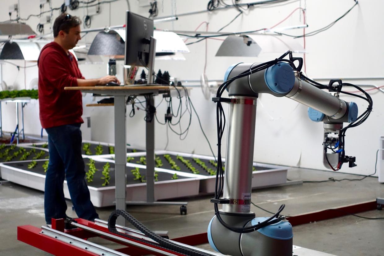 DAVE GERSHGORN/QUARTZ  A sample of Iron Ox's automated grow operation.