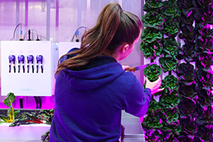 Freight Farms is working with NASA to find ways to grow produce in space. (Freight Farms)