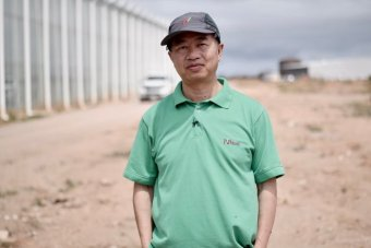 "PHOTO:  Henry Liu said when it came to urban farming, the future was ""very bright"". (ABC News: David Sciasci)"