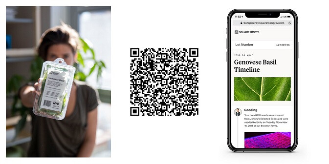 Urban farm Square Roots has unveiled what they call a transparency timeline, accessed via QR code on their packaging. ( Square Roots )