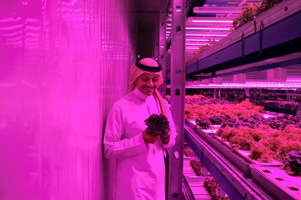 Omar Al Jundi is the founder and chief executive of Badia Farms, the region's first vertical farm, in Al Quoz, Dubai. Reem Mohammed/The National