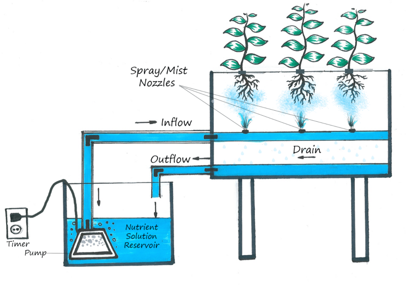Image From   http://hydroponicpassion.blogspot.com/2013/12/hydroponic-systems_20.html