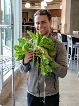 Dylan Wootton, a member of the U's Hydroponics Club, holds lettuce grown in hydroponic incubators. (Courtesy of Dylan Wootton)