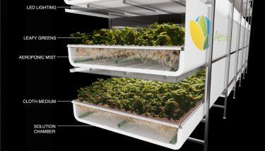 AeroFarms grows produce without sun or soil in a fully-controlled indoor environment – image courtesy of AeroFarms.