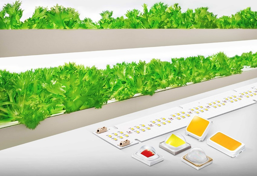 Samsung's Horticulture LED Package and module