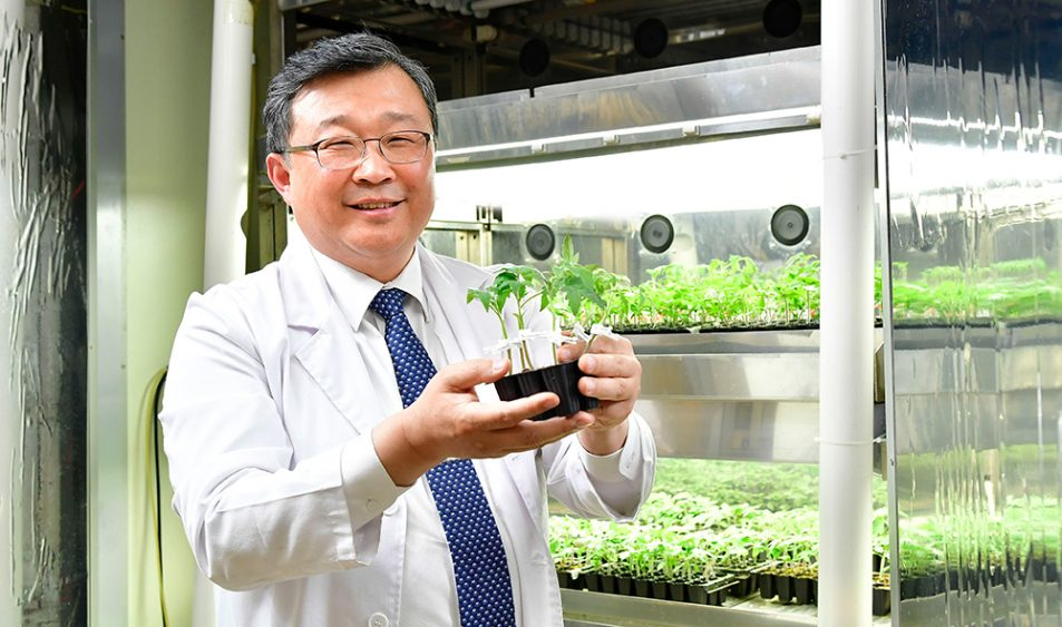 (Professor Changhoo Chun; image: Samsung)
