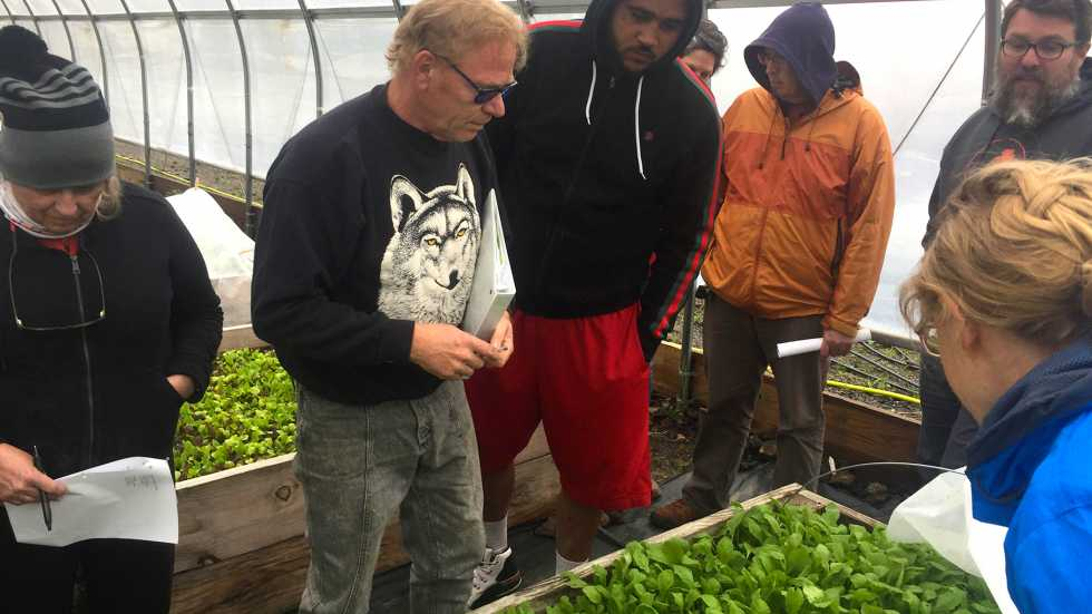 During a recent project training session, growers gathered around their trial run beds of radishes and baby lettuce. [ideastream / Lecia Bushak]