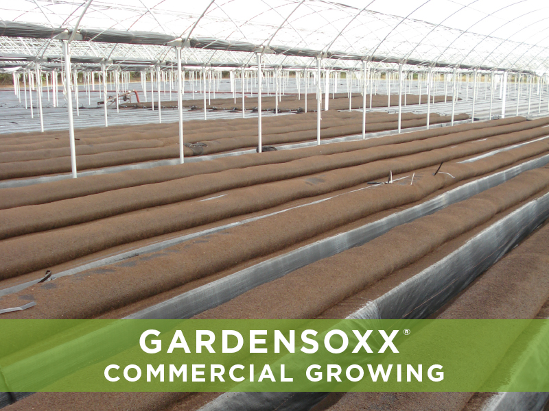 GardenSoxxCommercialGrowing_5.jpg