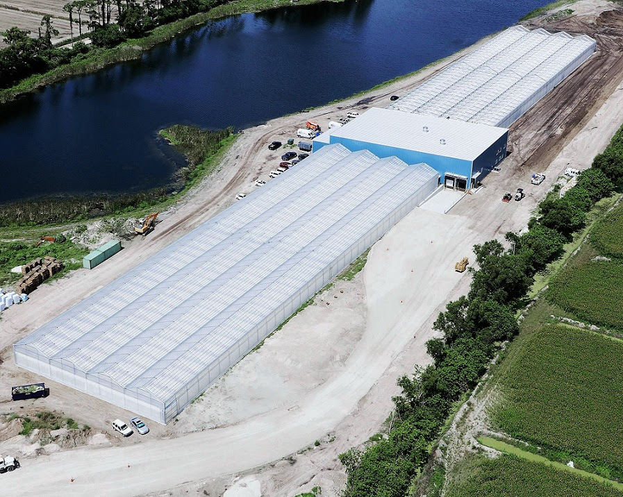Green Life Farms   has harvested its first crop of baby leafy greens at its flagship hydroponic greenhouse in Lake Worth, an important milestone as the company prepares to begin selling to supermarkets, restaurants, cruise ships and other distributors. The facility, pictured above, has recently achieved Substantial Completion, and the team is now harvesting its first crops, which include Baby Arugula, Baby Romaine, and Baby Spinach. Green Life Farms expects to begin growing produce for customers later this summer. Photo credit: Hydronov
