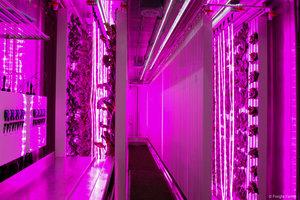Freight+Farms_LGM+Interior+2.jpg