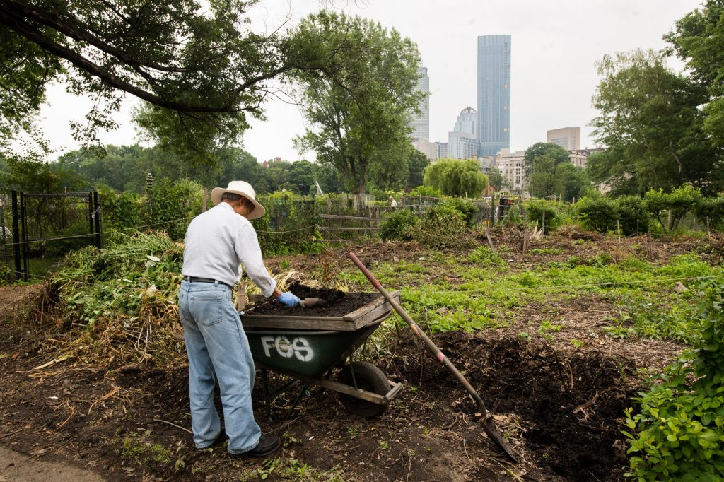 The Urban Agriculture class explores the racial and ethnic dynamics that can frequently determine who gets to garden in the city and where. Photo by Cydney Scott