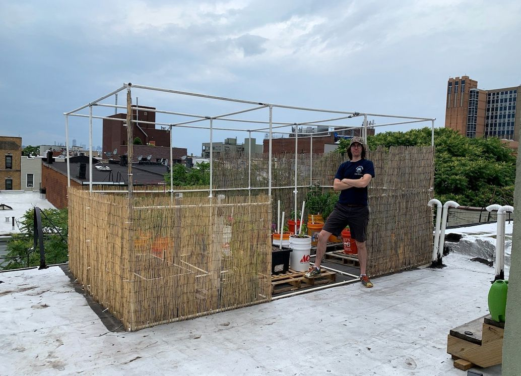 The author with his completed (and thriving) rooftop garden.Courtesy of Ryan Boysen