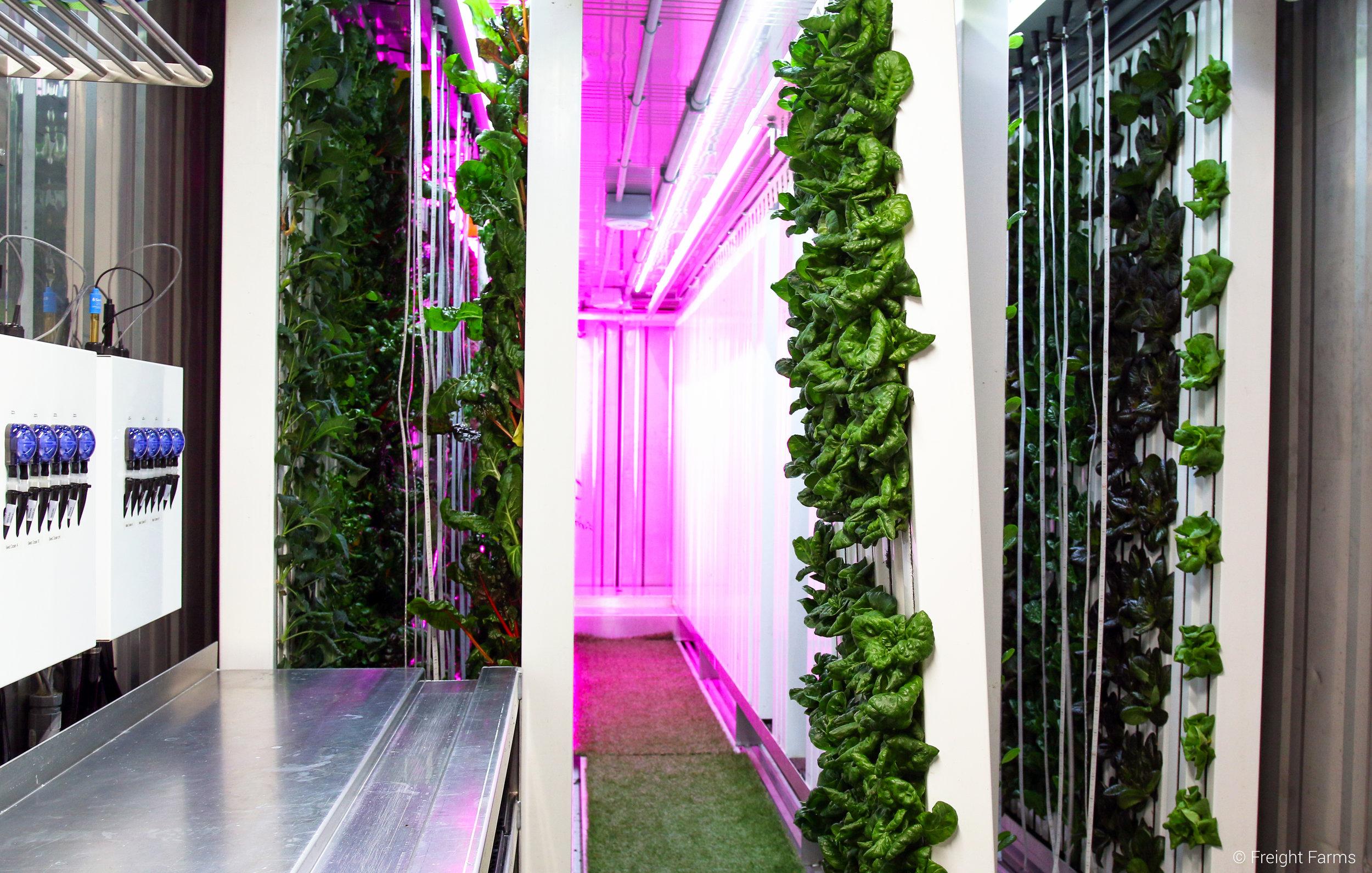 Freight Farms_LGM Interior 3.jpg