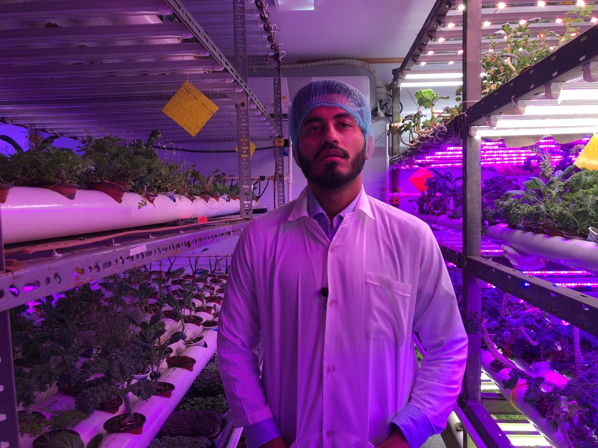 Farhan Sohail, a process and product development engineer in Pakistan's first vertical farm, speaks to Arab News in Karachi on September 26, 2019 (AN Photo)