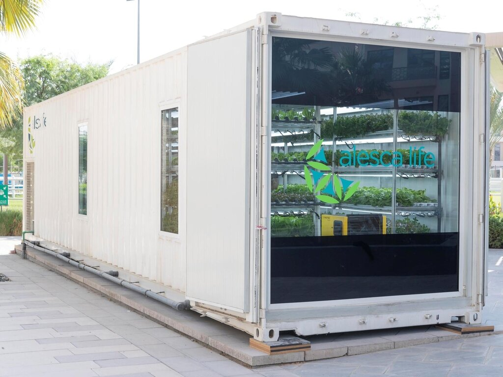 Hydroponic Shipping Container Farms — iGrow