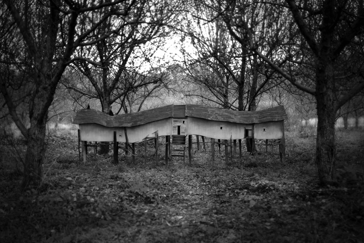 Migration House, Photograph/Sculpture, Robert Hite, 2007
