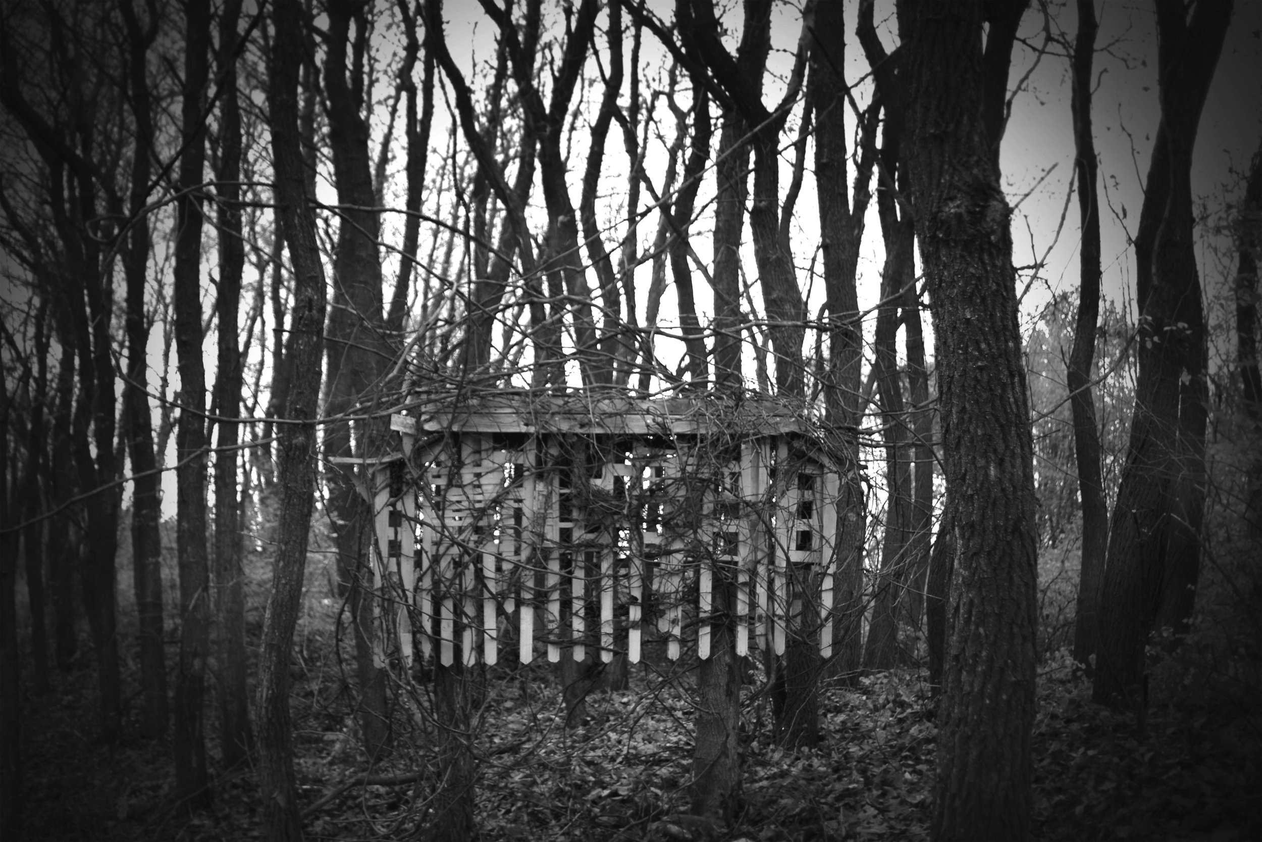 Picket House, Photograph/Sculpture, Robert Hite, 2007