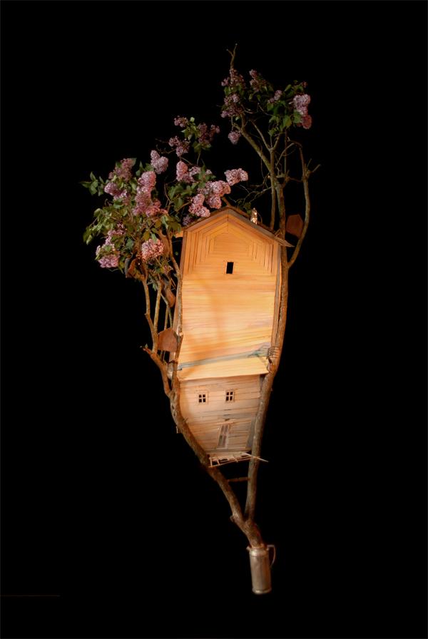 Lilac Black, Photograph/Sculpture, Robert Hite, 2010