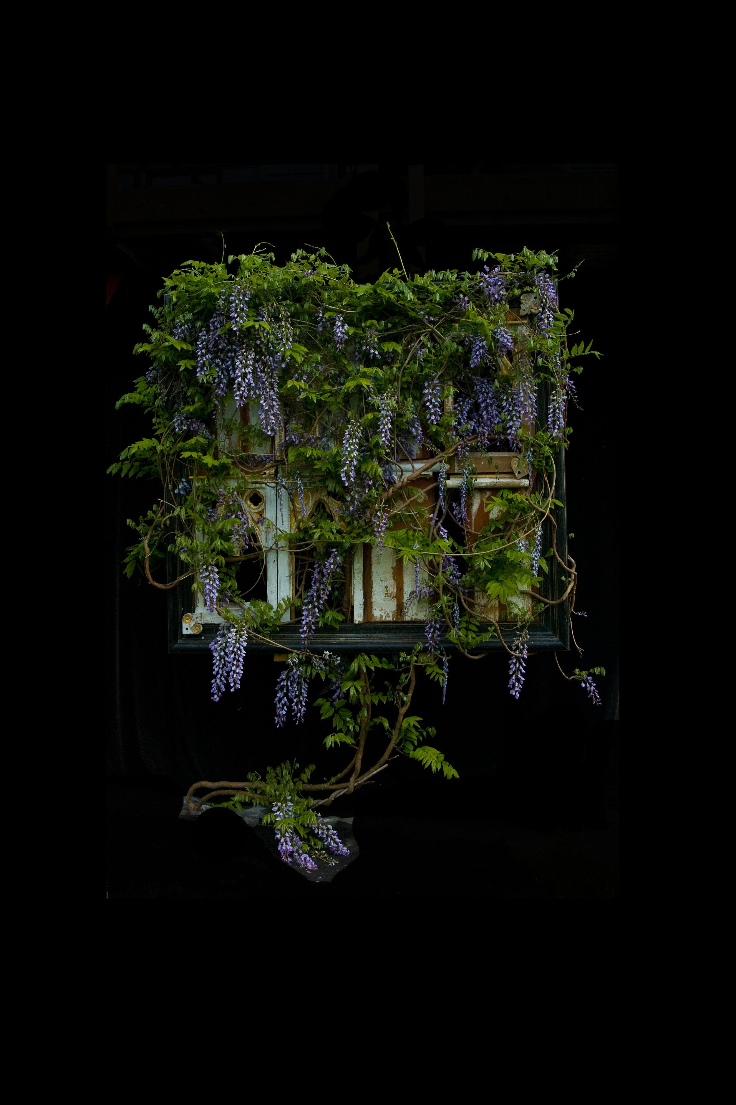 Alter Altar Full Bloom, Photograph/Sculpture, Robert Hite, 2010