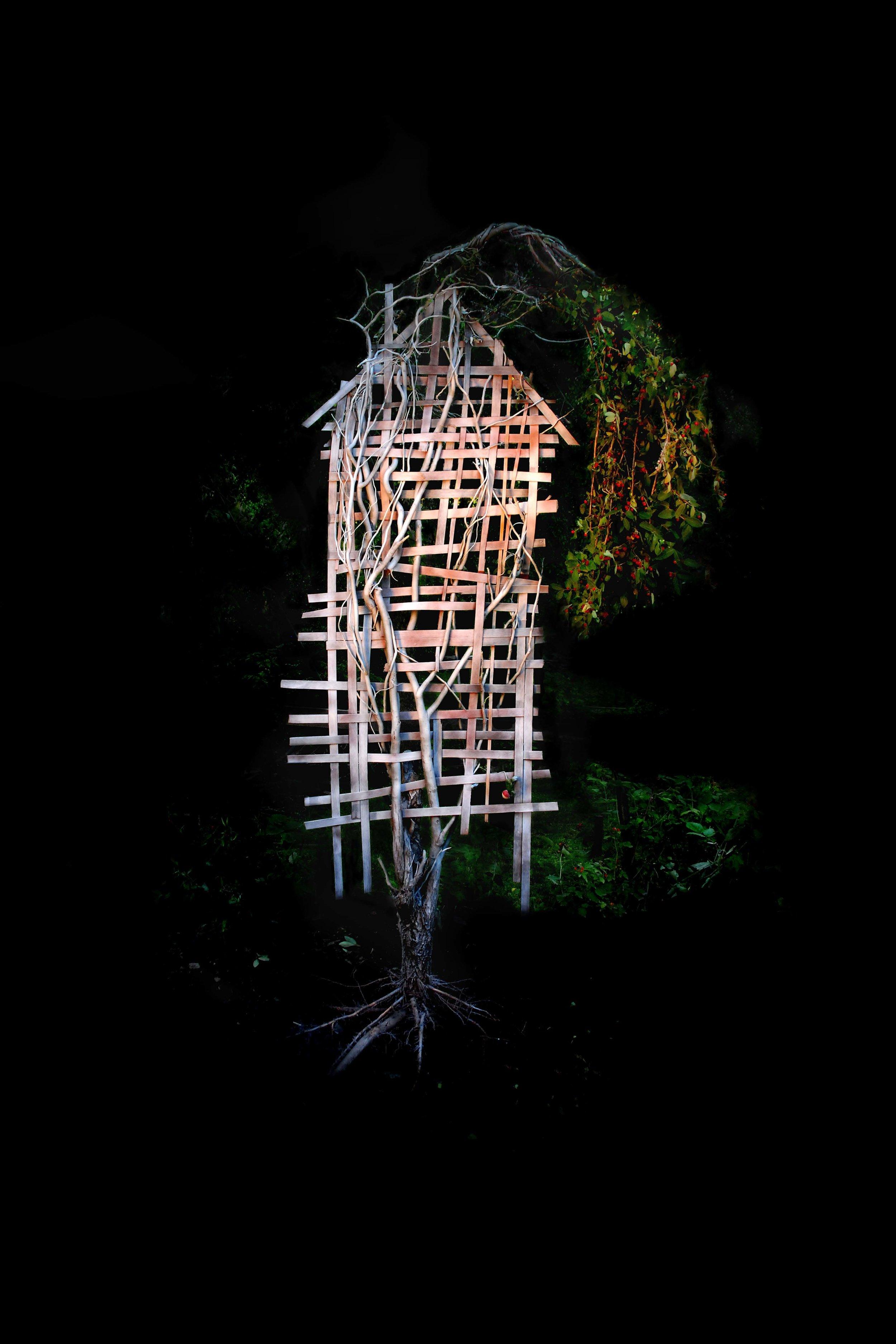 Lament, Photograph/Sculpture, Robert Hite, 2008