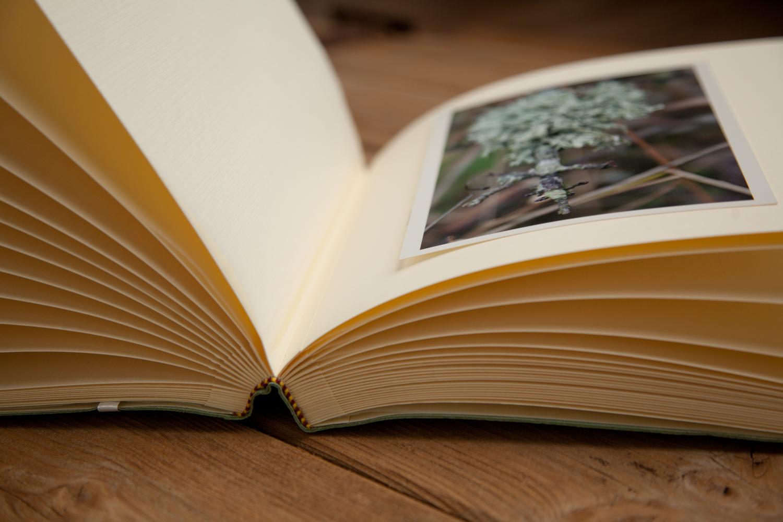 PICTORIAL_BERWICK_julie-dunthorne-lockie-books-maker-crafting-business-9017.jpg