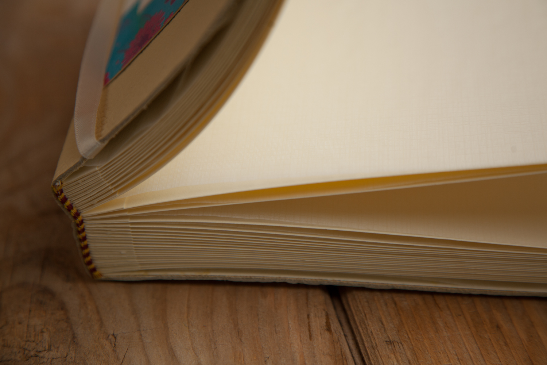PICTORIAL_BERWICK_julie-dunthorne-lockie-books-maker-crafting-business-9008.jpg