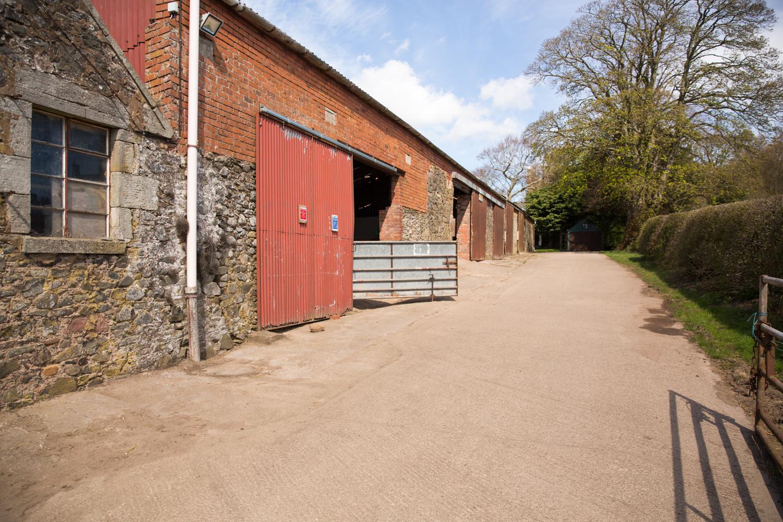 Eat-Sleep-Ride-Horse-training-disadvantadged-haugh-head-farm-danielle-pictorial-photography--002.jpg