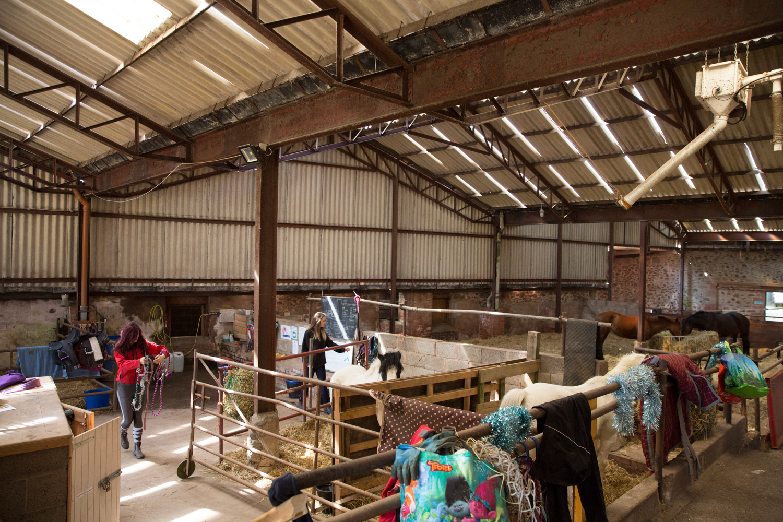 Eat-Sleep-Ride-Horse-training-disadvantadged-haugh-head-farm-danielle-pictorial-photography--044.jpg