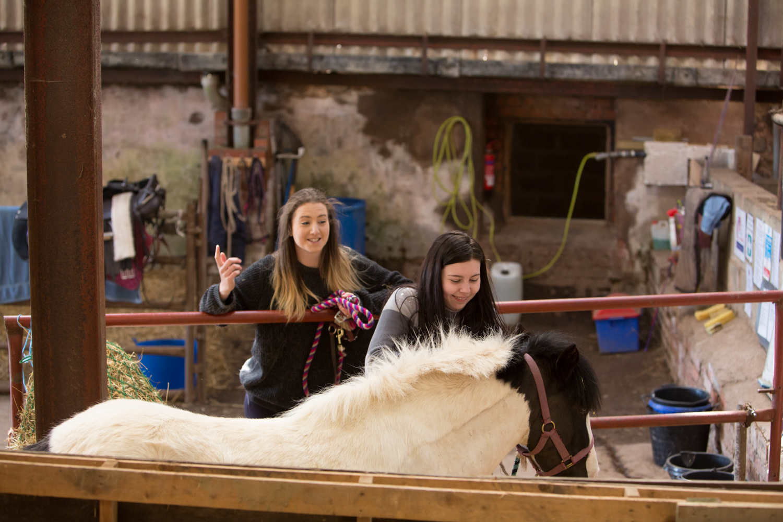 Eat-Sleep-Ride-Horse-training-disadvantadged-haugh-head-farm-danielle-pictorial-photography--085.jpg