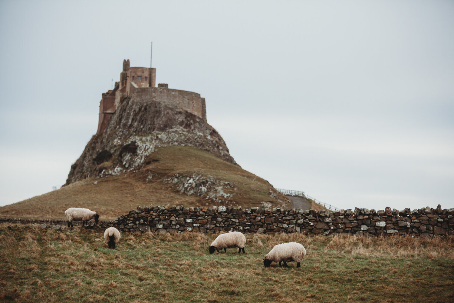 lindisfarne — News — Pictorial Photography