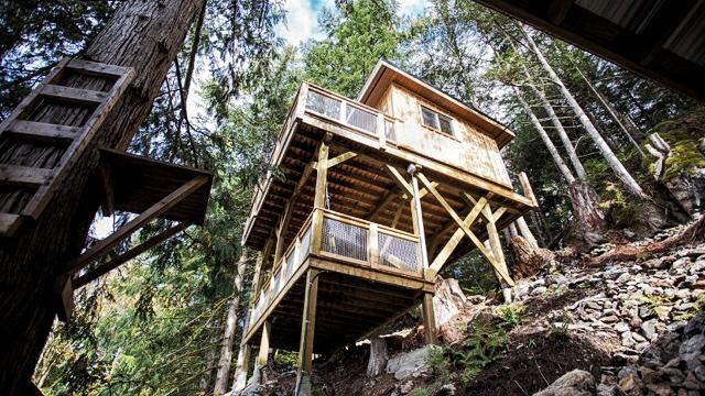 Cabin in the Trees.jpg