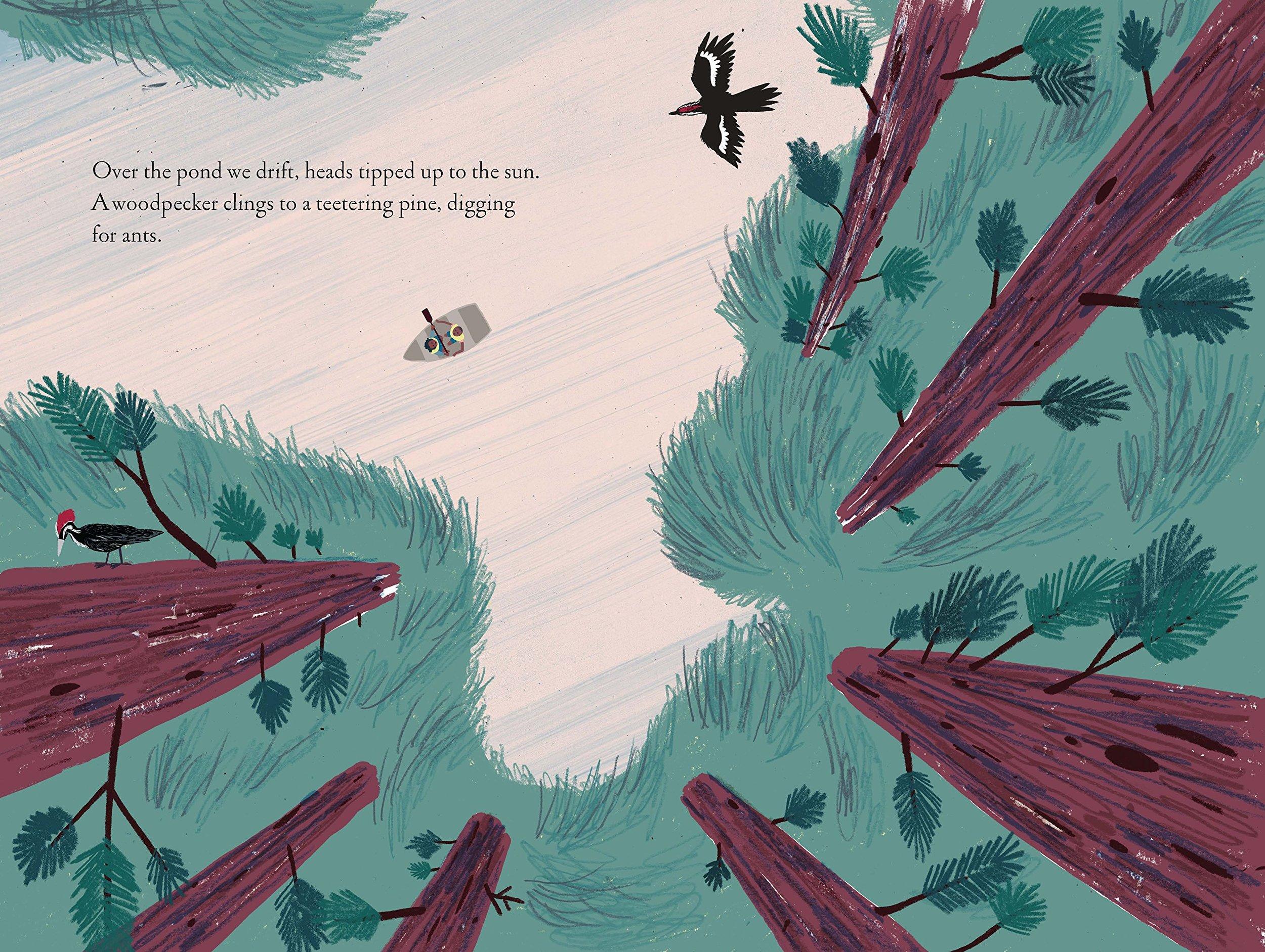 pond-woodpecker-overthepond.jpg