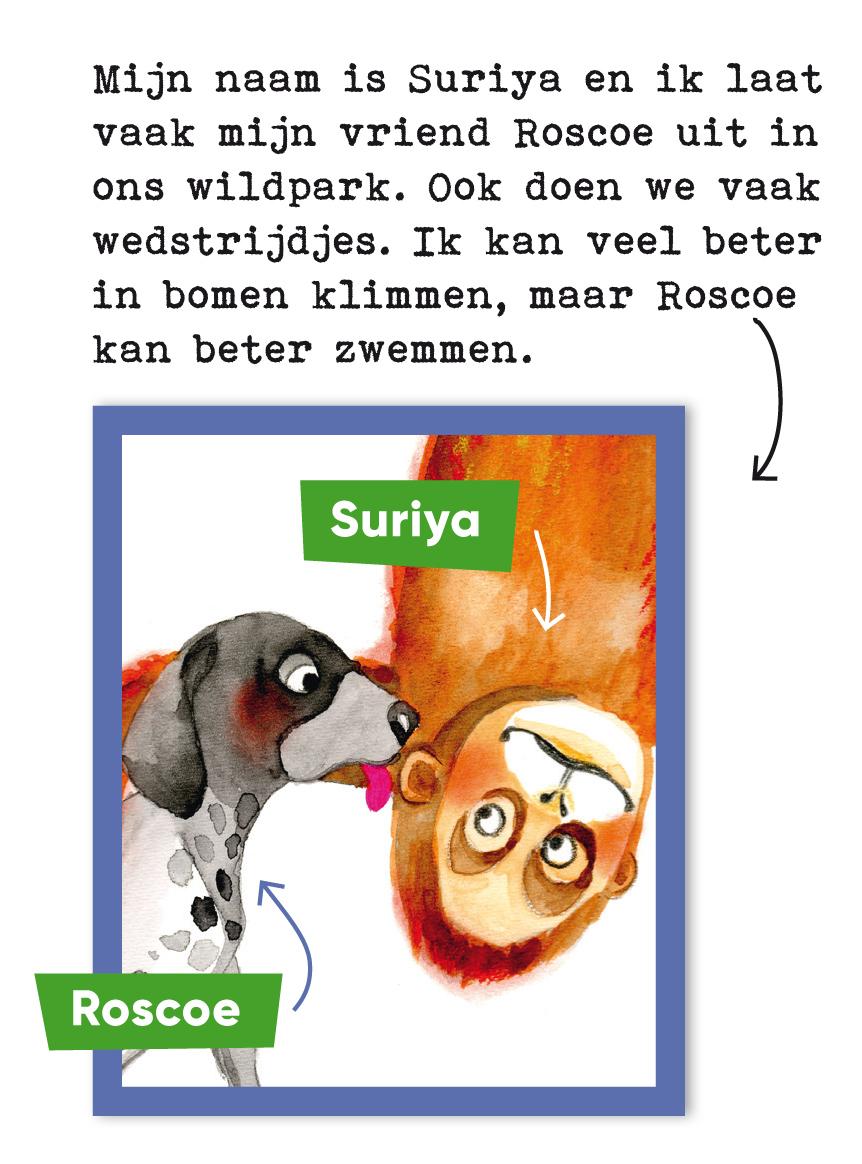 1-voorstellen-roscoe-suryia.jpg